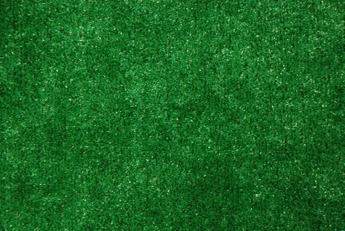 Green Astroturf Image